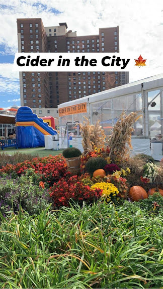 Harvest, Healthy Harvest Fun in Detroit, Carley Creative Concepts