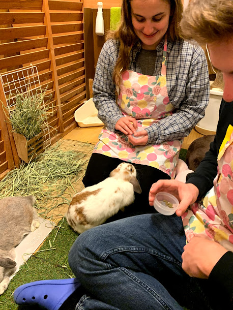 Trip, Relieve Stress with a Trip to a Bunny Cafe, Carley Creative Concepts